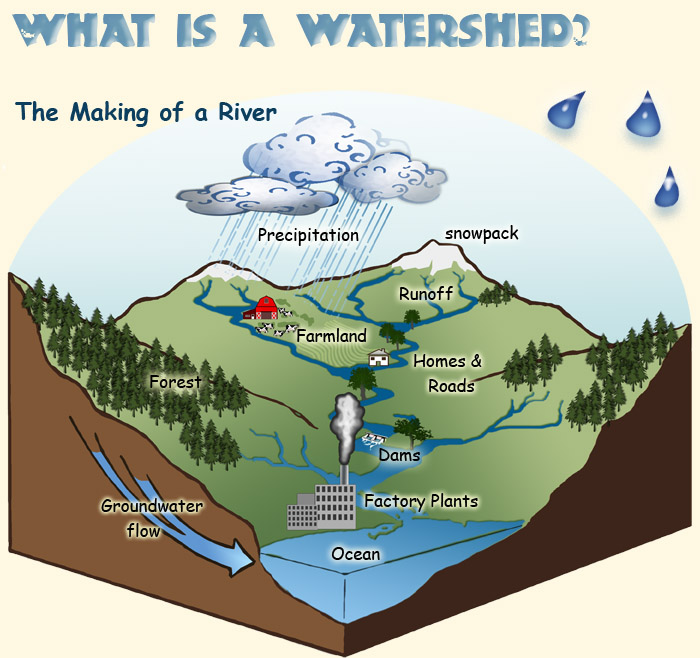 What Is A Watershed Science For Kids Watersheds