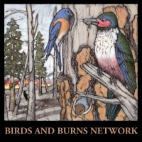 Birds and Burns Network logo
