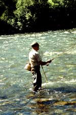 [image] A picture of a man fishing in a river.