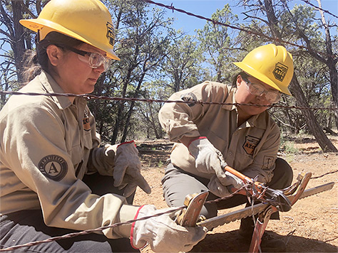 2 Arizona Conservation Corps members building a fence.