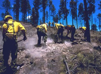 A Burned Area Emergency Response (BAER) crew hard at work.