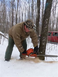 Scott Smith, a Lac du Flambeau tribal member, cuts a tree marked for firewood on the Chequamegon-Nicolet National Forest.