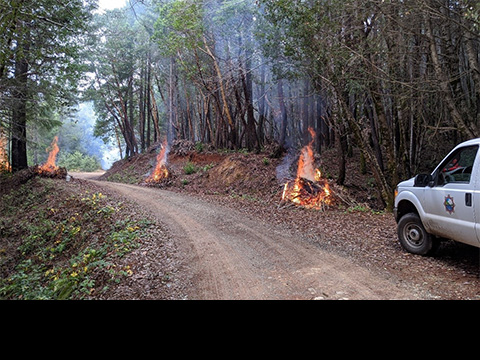 Three small brush piles burn along the side of the road as part of the fire restoration initiative.