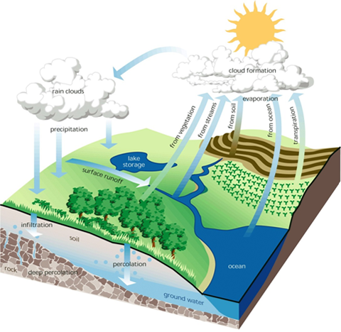 about soil water and sediment article
