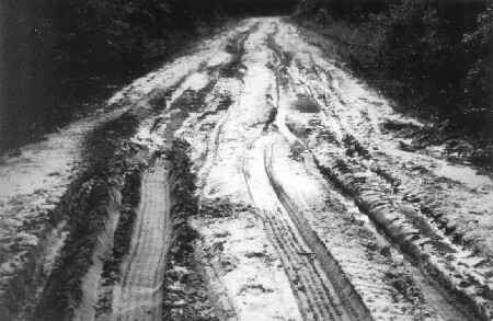 Figure 1—Rut development on Florida low-volume road.