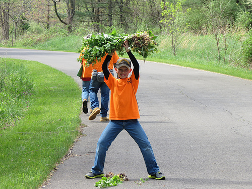 A Petersburg (Virginia) Elementary School student proudly displays his first garlic mustard haul. Volunteers are key to the removal of invasive species, such as the garlic mustard. (U.S. Forest Service