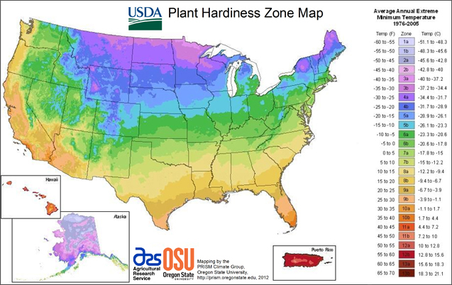 2012 USDA Plant Hardiness Zone Map on the USDA Agricultural Research website.
