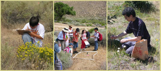 Three pictures: left is a boy making notes on a clipboard; middle is a group of men, women and children standing around a vegetation plot; right is a young man kneeling and collecting seed.