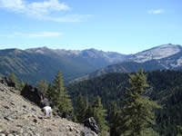 View from the collecting site south to the high Trinity Alps.
