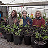 Three women stanging behind plants in pots in a greenhouse.