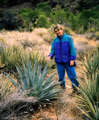 Agave phillipsiana habitat, a woman standing beside an agave phillipsiana.