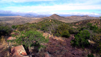 "View from one of the higher ""peaks"" of the Canelo Hills."