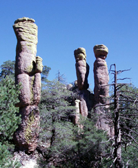Chiricahua National Monument rock spires.