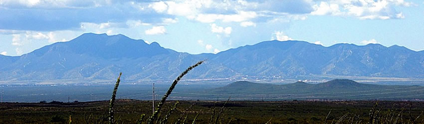 Huachuca Mountains banner scene. Photo from www.saguaro-juniper.com.