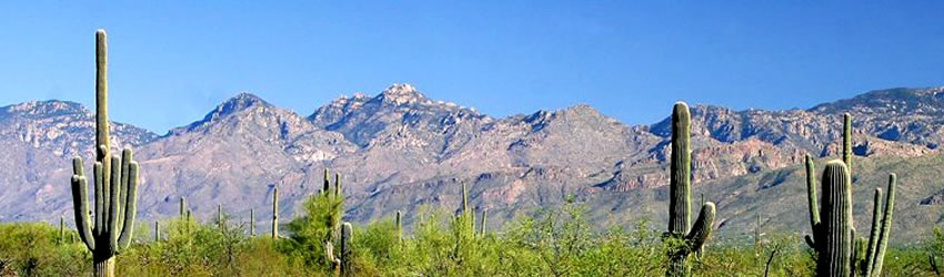 Santa Catalina Mountains banner scene. Photo by Mark Doiron at www.summitpost.org.