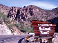 A Coronado National Forest sign along the Hitchcock Highway.
