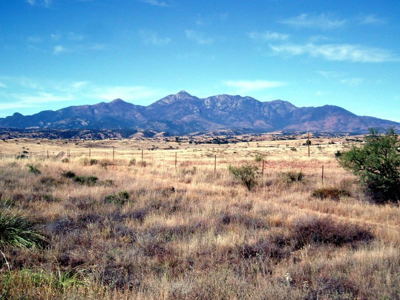 Desert grasslands extend for miles from the Canelo Hills to the base of the Santa Rita Mountains.