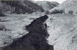 Erosion caused by overgrazing.
