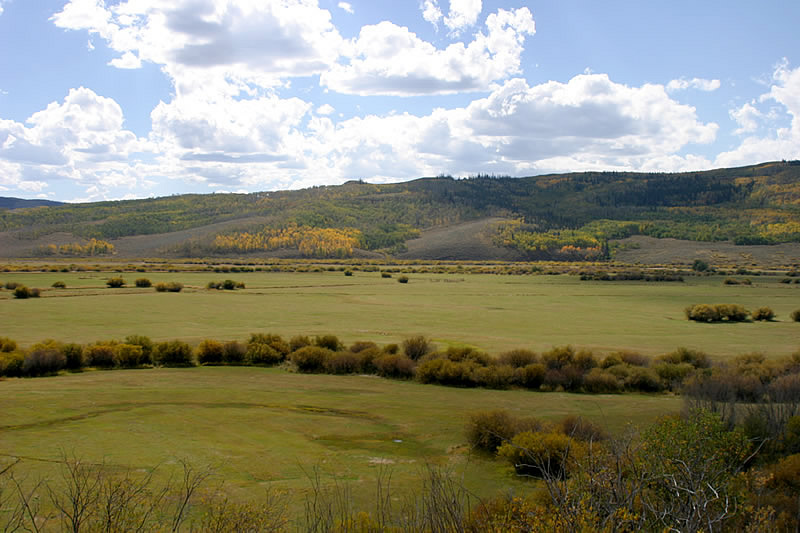 area of the west-side of North Park in Colorado, displaying grazing lands in the foreground and aspen stands on teh mountains in the background.