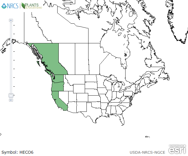 Map of North America showing green shaded areas where the species may be found.