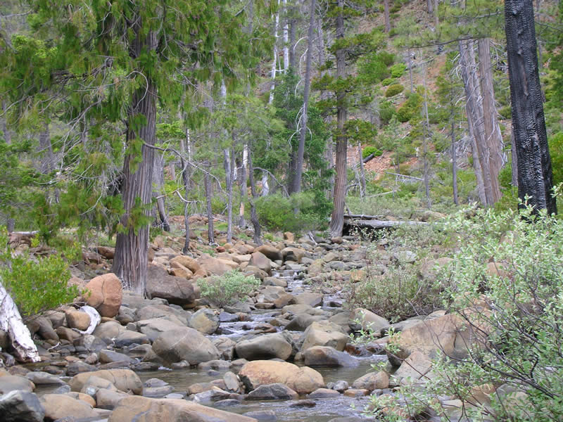 Josephine Creek, Siskiyou National Forest.