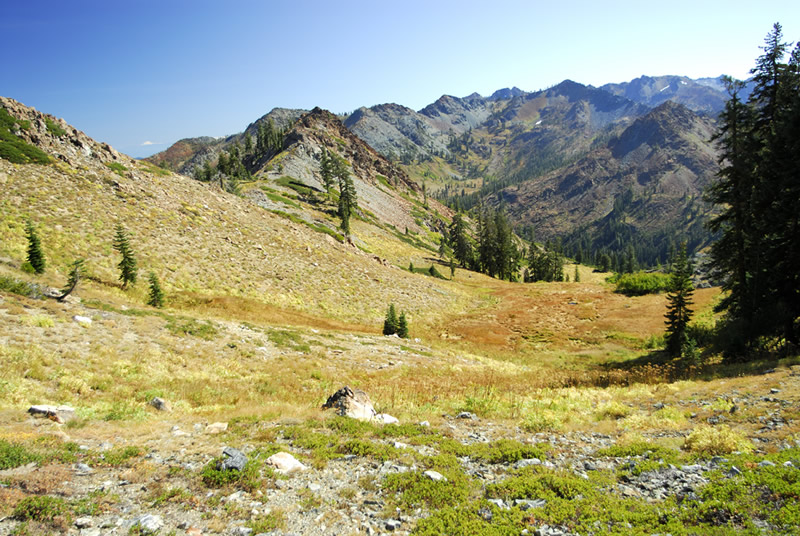 High elevation meadow system in the Trinity Alps.