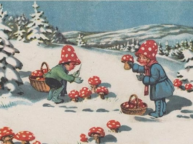 Fly agaric children's holiday card.