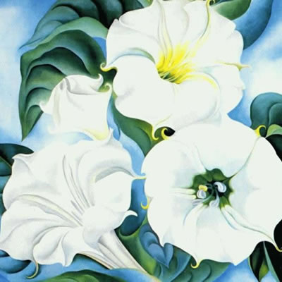 Georgia O'Keeffe painting of Datura flowers.