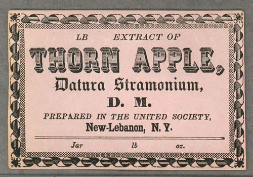 Extract of Thorn Apple advertisement.