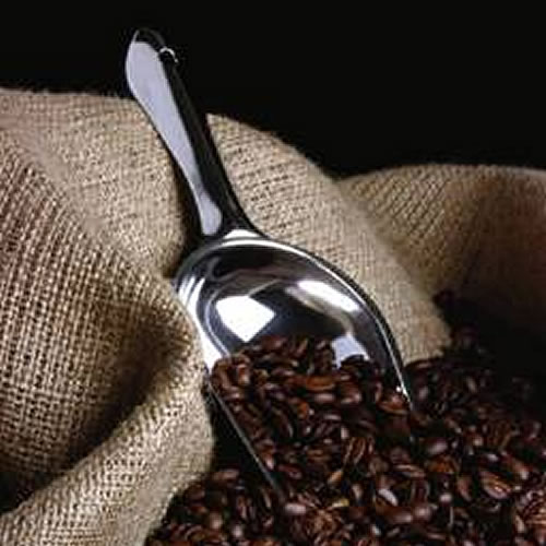 Coffee beans beside a coffee bag and spoon.