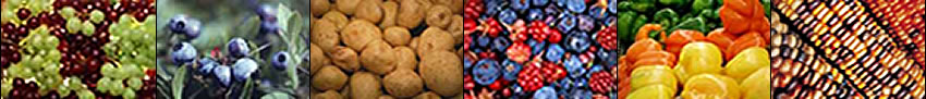 Image banner: grapes, blueberries, potoatoes, mixed berries, peppers, and corn.