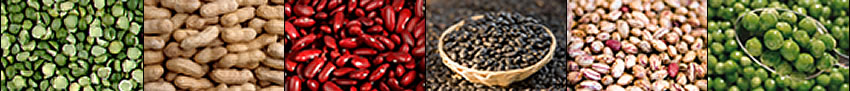 Image banner: split peas, peanuts, red beans, black beans, pinto beans, and sweet peas.
