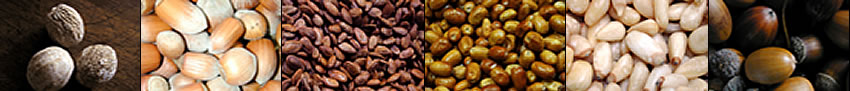 Image banner: muskaat, acorns, chestnuts, almonds, pinion nuts, and pecans.