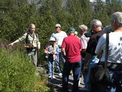 Forest Service Naturalist talking about native plants to a group of people in Portage Valley, Alaska.