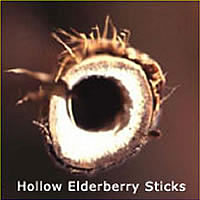 hollow elderberry stick.