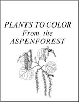 Plants to Color from the Aspen Forest Cover