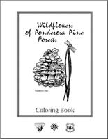 Wildflowers of the Ponderosa Pine Forests Cover