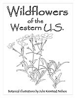Wildflowers Of The Colorado Mountain Tops Cover