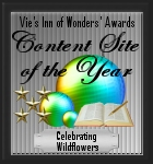 Vie's Inn of Wonders' Awards - Content Site of the Year 2007 award logo
