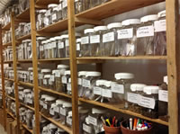 Seed storage shelves with jars of seeds on them.