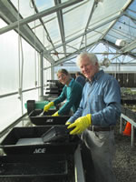 Volunteers working in the nursery.