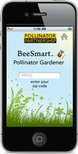 Bee Smart on a smartphone display.