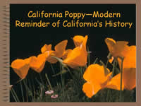 Title page of California Poppy - Modern Reminder of California's History.