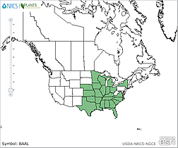 Map of the United States showing states. States are colored green where the species may be found.