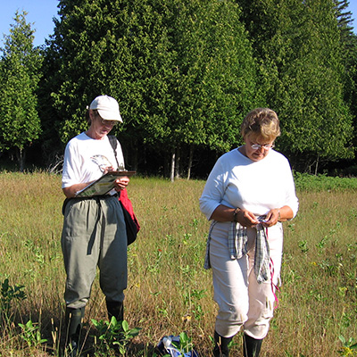 Picture of two women counting and recording the number of monarch eggs and larvae on milkweed.