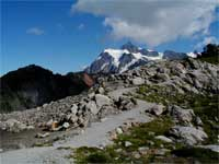 View of Artist Ridge Trail with Mt. Shuksan in the background.