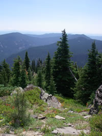 View into Badger Creek Wilderness from Lookout Mountain.