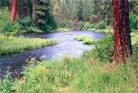 the Metolius River.