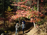 Hikers admire the brilliant fall foliage.