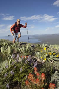 Hiker walking through a field of wildflowers with Lake Tahoe in the distant background.